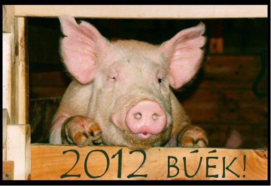 B.Ú.É.K.! 2012
